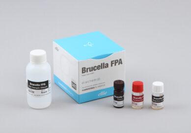 Brucella FPA kit in English